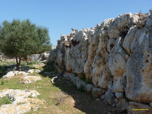 Part de la muralla feta amb pedres de gran tamany