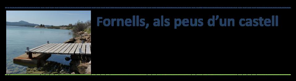 introduccio Fornells