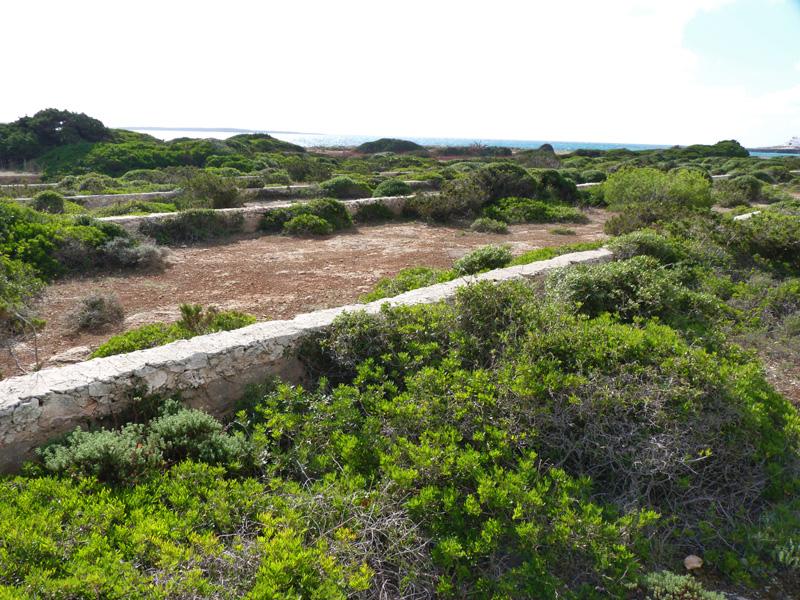 P1160201Salines Punta Prima