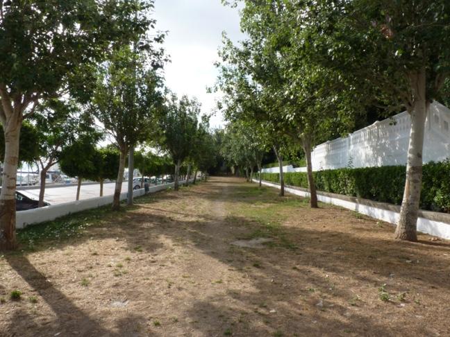 P1190946 Hort Nou