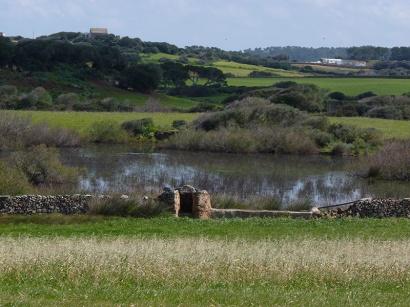 Prats i zones humides
