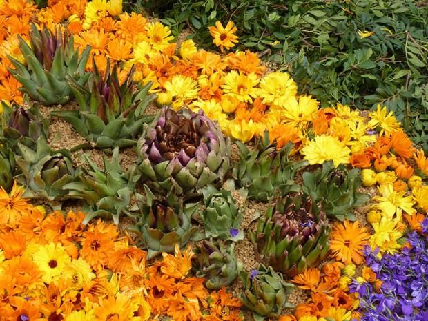 P1350959Ferreries floreix